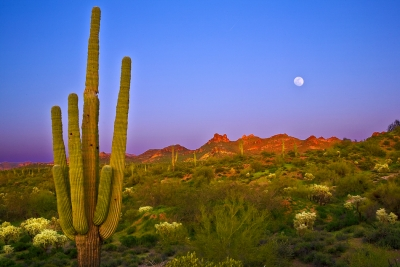 Arizona, Superstiton Wilderness, Lost Dutchman State Park,sunset