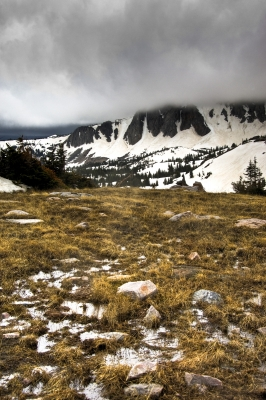 Melting And Falling Snow In Medicine Bow