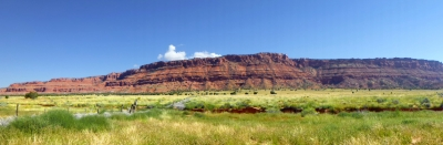 Vermilion Cliffs View