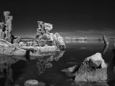Reflections At Mono Lake
