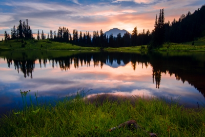 Mt. Rainier And Tipsoo Lake, Wa
