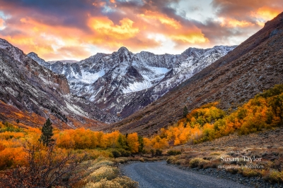 Eastern Sierra Autumn Dream