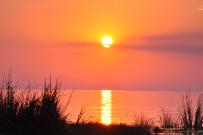 Sunset At Racoon Point