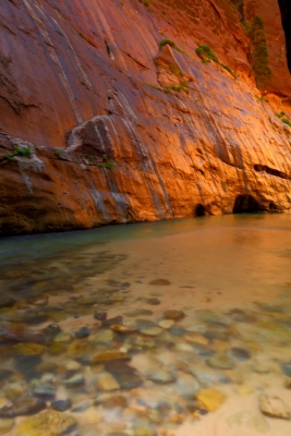 Morning Glow With Aqua Water In Zion Narrows