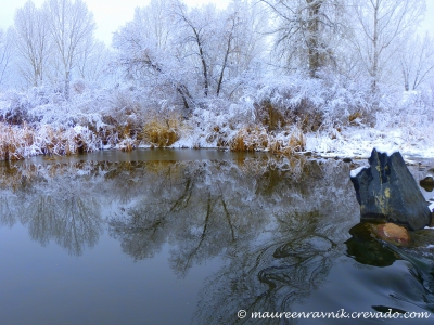 Winter On The South Platte River