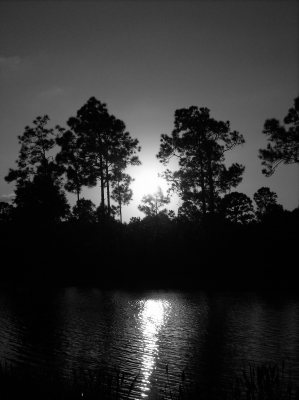 Black And White Sunset2
