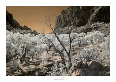 Zion Canyon Infrared