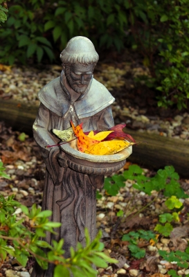 St. Francis Welcomes Fall