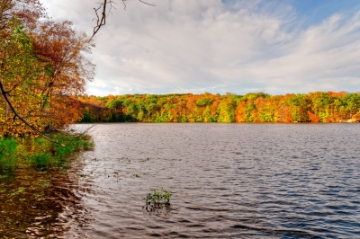Fall, Reservoir, Water, Sky, Trees, Hdr