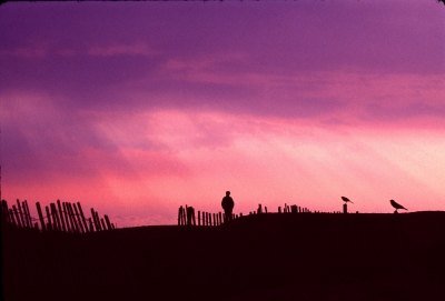 Outer Banks Silhoutte