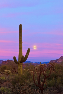 Moonrise In The Superstitions
