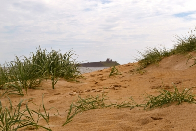 My Fall In The Sand Dunes
