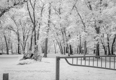Snow?  No.  Infrared.