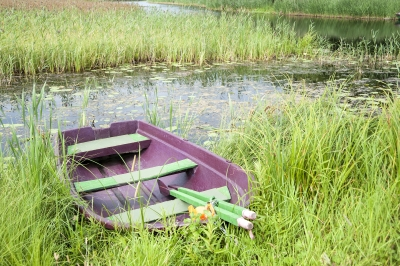 Rowboat On Shore In Finland