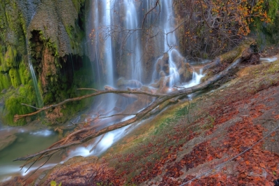 Forked Branch And Waterfall