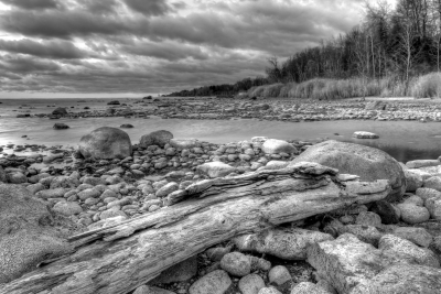 Boulders & Driftwood On Lake Huron