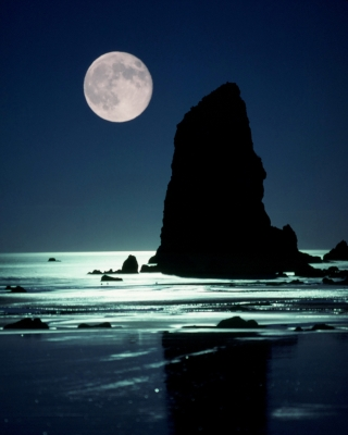 Moon Set At Cannon Beach