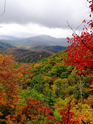 Autumn In Great Smoky Mountain National Park
