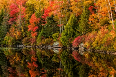 Vermont Fall Colors #1