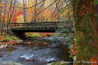 Bridge Over The Cataloochee River