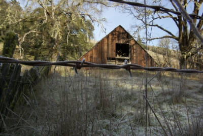 Frozen Barn/barbed Wire