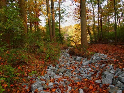 Fall Begins At Lum's Pond