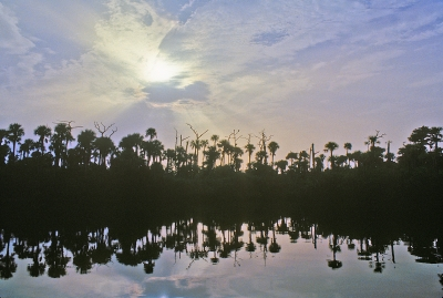 Loxahatchee River Sunrise #23