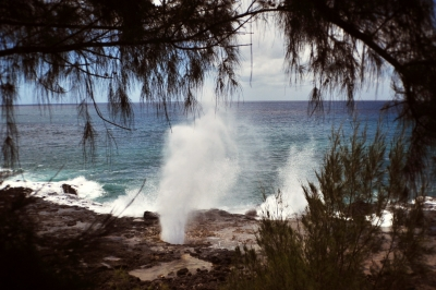 """Viewing The """"blowhole"""""""