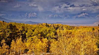 Thunderstorm, Grand Tetons, Golden Aspens