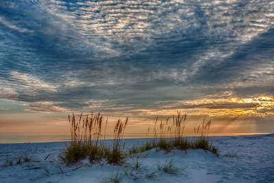 """sea Oats Sunset"""