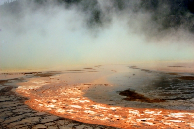 Grand Prismatic Spring Microbial Mats