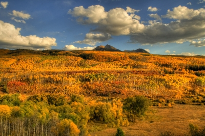 Fall Colors On Mcclure Pass