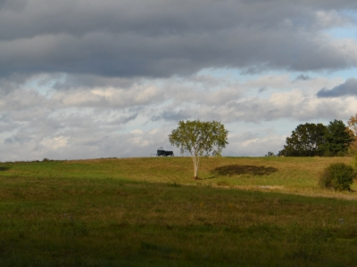 Wagon Hill