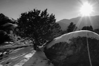 Winter Afternoon In Garden Of The Gods B&w
