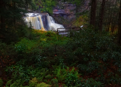 In The Midst Of Wild Wonderful Blackwater Falls