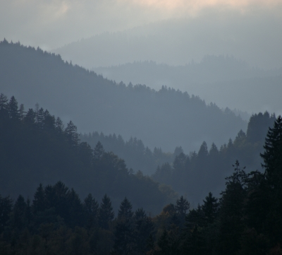 A Japanese Landscape In Slovenia