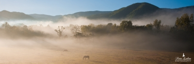 Morning Fog Over Cades Cove