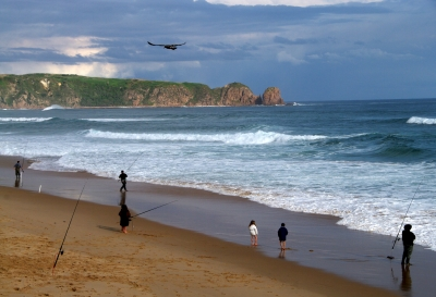 Surf Fishing Cape Woolamai