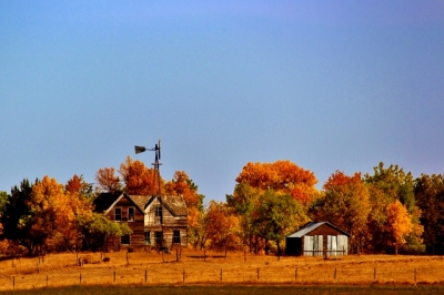 Fall Homestead