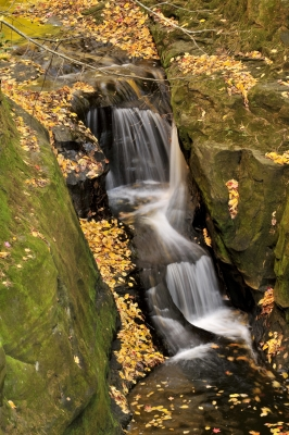 Waterfalls And Autumn Color