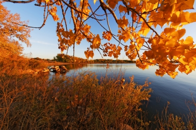 Fall On The Reservoir