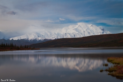 Mt. Mckinley & Wonder Lake Before Sunrise