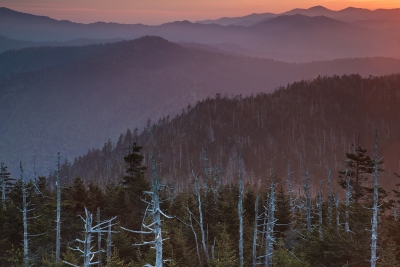 Morning's Glow In The Smoky Mountains
