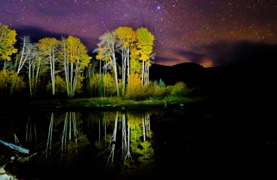 Starry Night Over Woods Lake