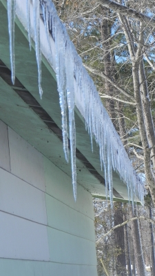 Southern Icicles