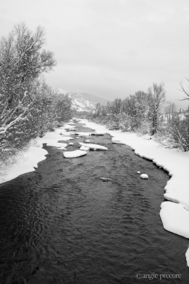 Yampa River Snowscape
