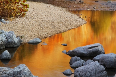 Autumn Reflections In The Black River