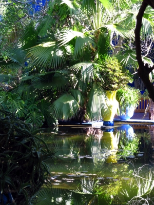 Refections In A Garden