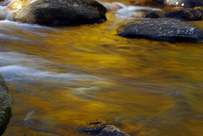 Rock Creek, Stream