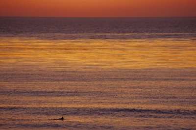 Surfer's Sunset